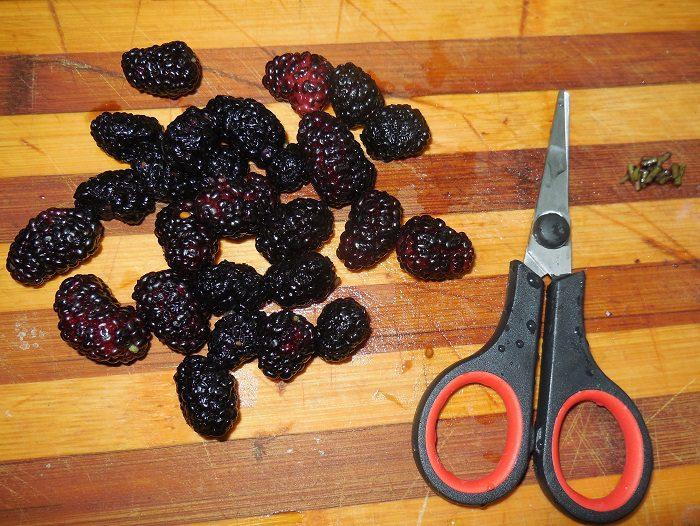 Фруктовый кисель из ягод и крахмала