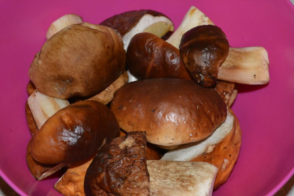 вкусный грибной суп из свежих белых грибов рецепт