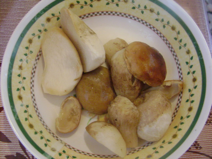запечь картофель со сметаной в духовке рецепт