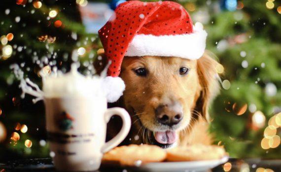 Простое и вкусное новогоднее меню 2018