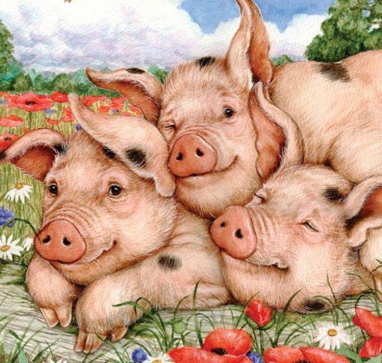 Картинка для нового года свиньи, поздравлением марта