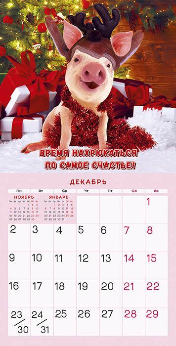 Окончанием, смешной календарь на 2019 год с картинками