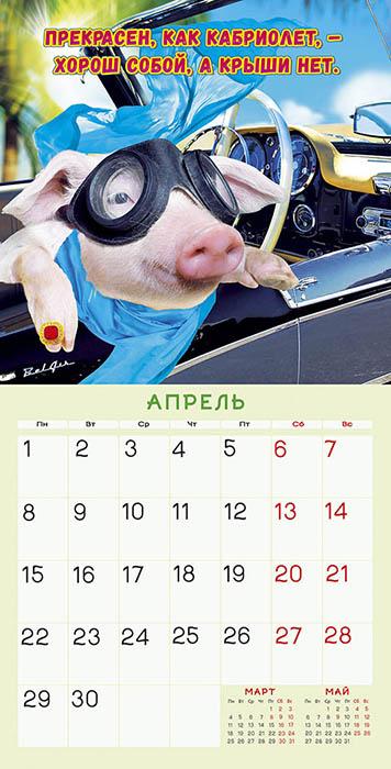 Прикольный календарь на 2019 год с картинками по месяцам