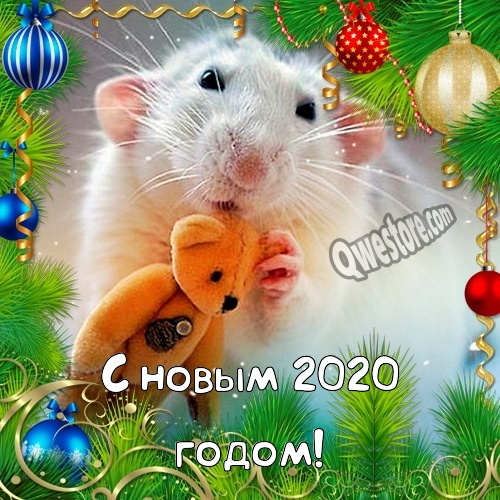 Интересные открытки на год Крысы