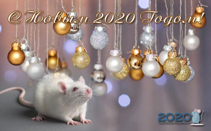 Новогодние открытки с годом Крысы