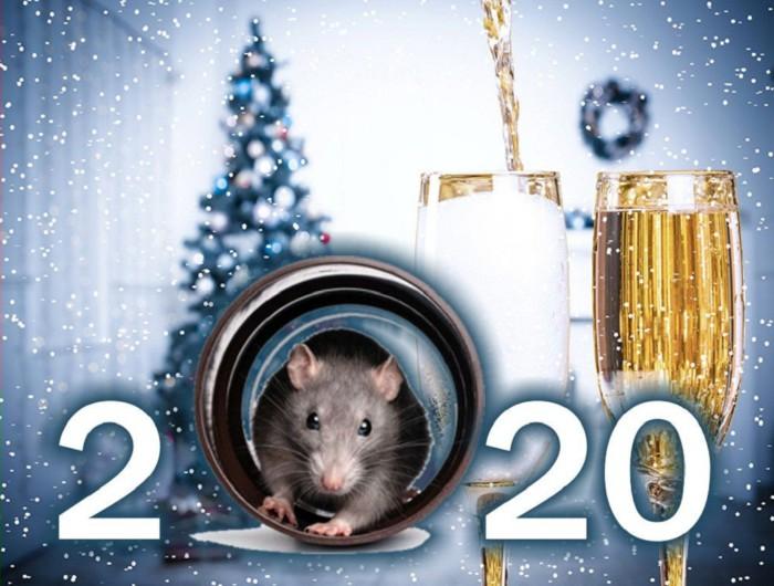 Бесплатные открытки с мышами на Новый год