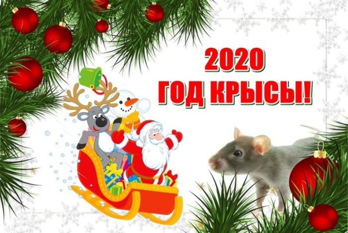 Интересные открытки на год Крысы в большом разрешении