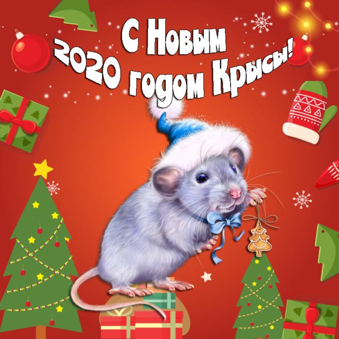 Креативные открытки с мышами на Новый год