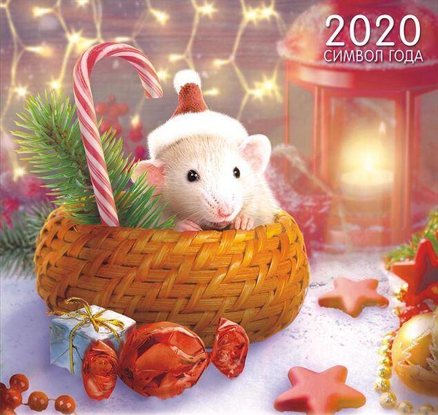Новогодние открытки с годом Крысы без текста
