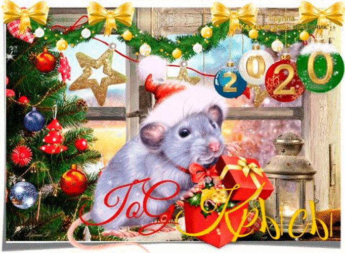 Красивые открытки с крысой на Новый год
