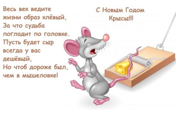 Смешные открытки с годом Мыши