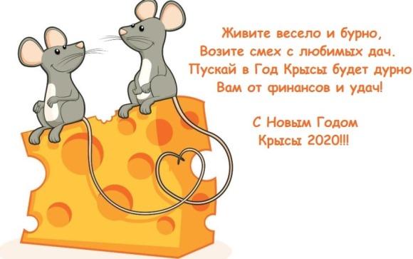 Прикольные открытки с годом Крысы - поздравление в стихах с юмором