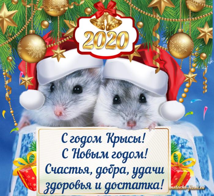 Современные открытки с мышками на Новый год