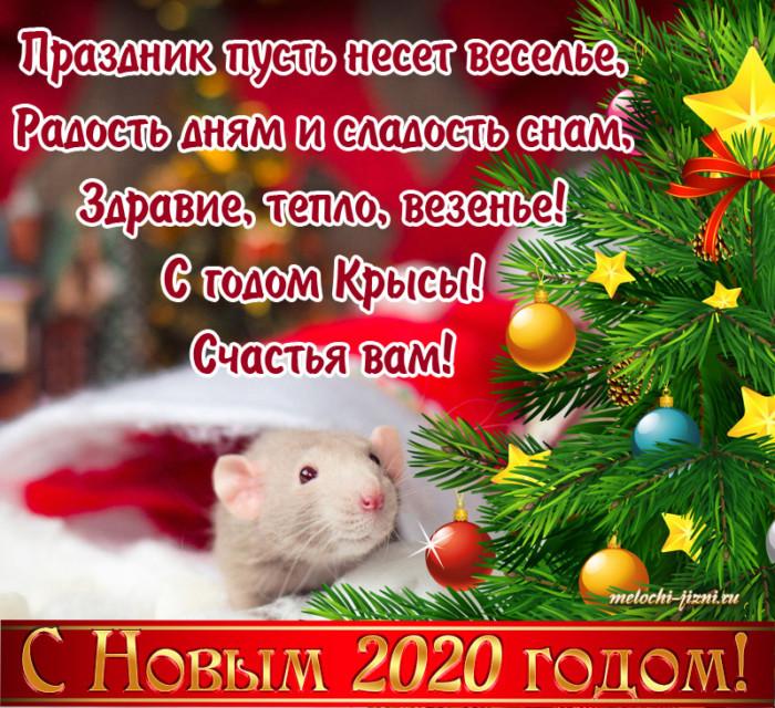 Интересные открытки на год Крысы - поздравление в стихах