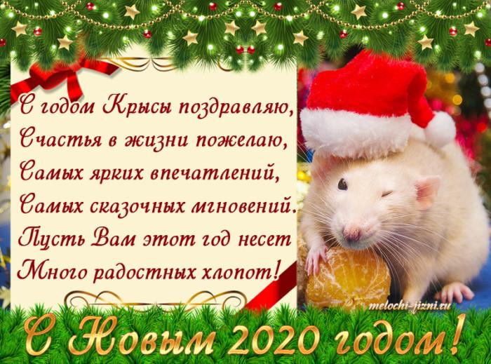 Красивые открытки на год Крысы - поздравление маленькое стихотворение