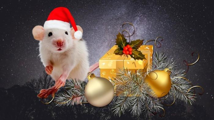 Современные картинки с мышками