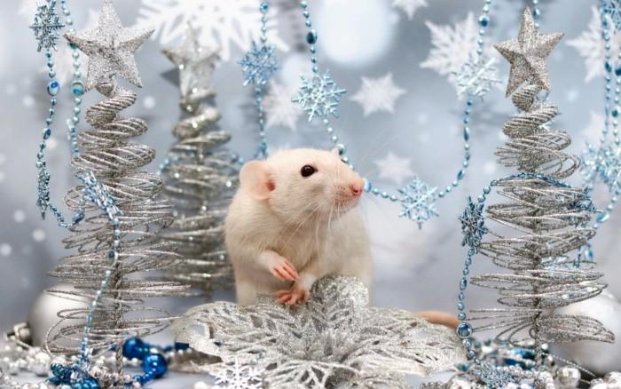Новогодние картинки с крысами и мышами